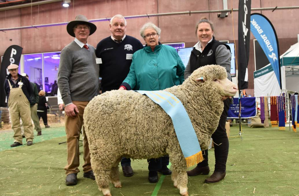 Australian Sheep & Wool Show 2018 Supreme Champion Polwarth - Fairview Henry